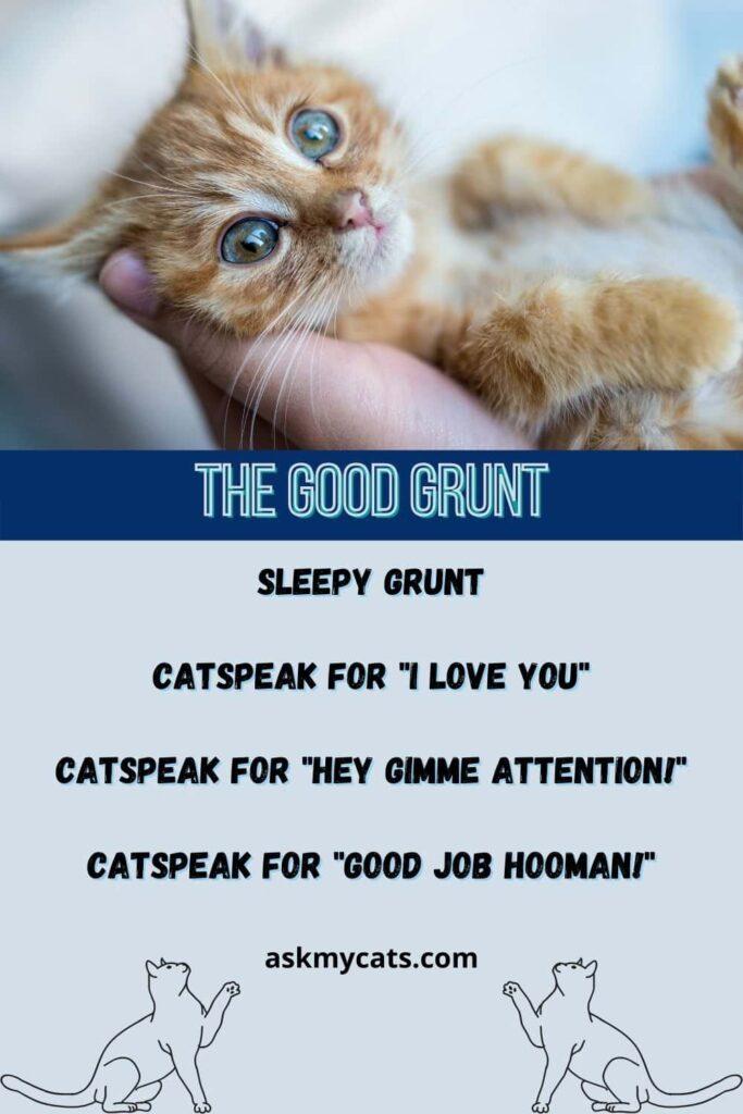 the good cat grunt