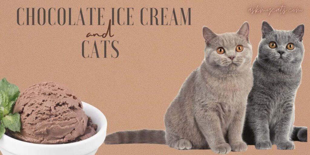 Chocolate Ice-Cream And Cats