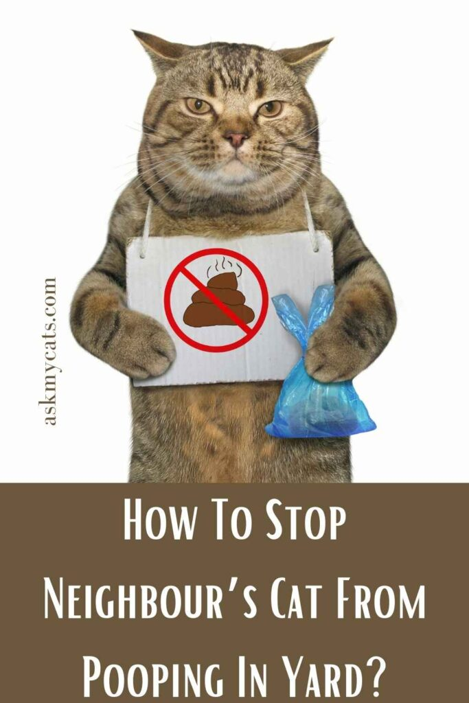 How To Stop Neighbour's Cat From Pooping In Yard?