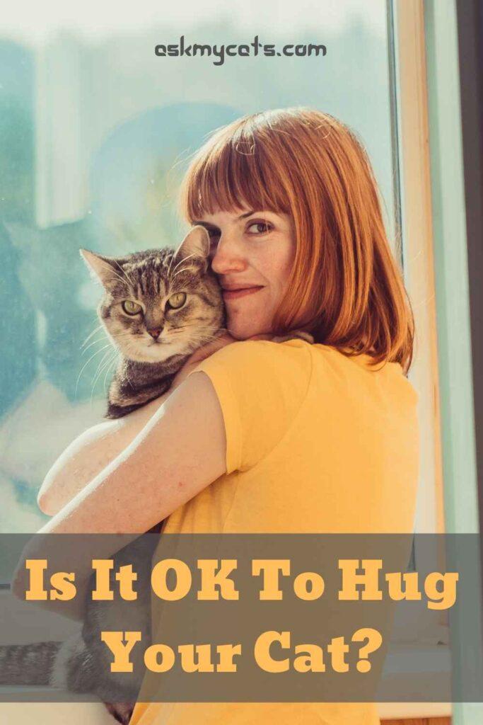 Is It OK To Hug Your Cat?