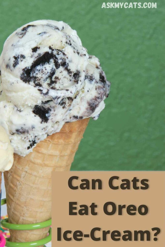 can cats eat ice cream?