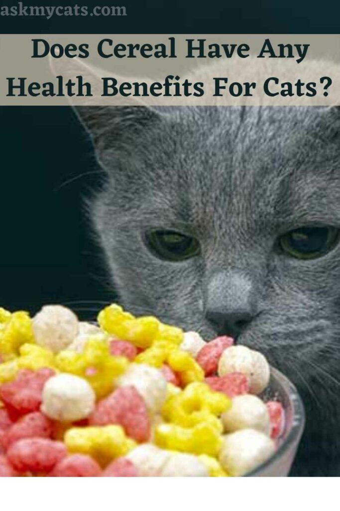 Does Cereal Have Any Health Benefits For Cats?