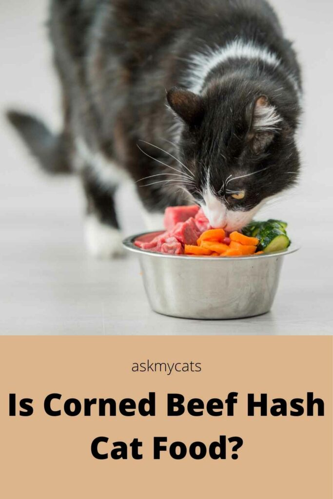Is Corned Beef Hash Cat Food?