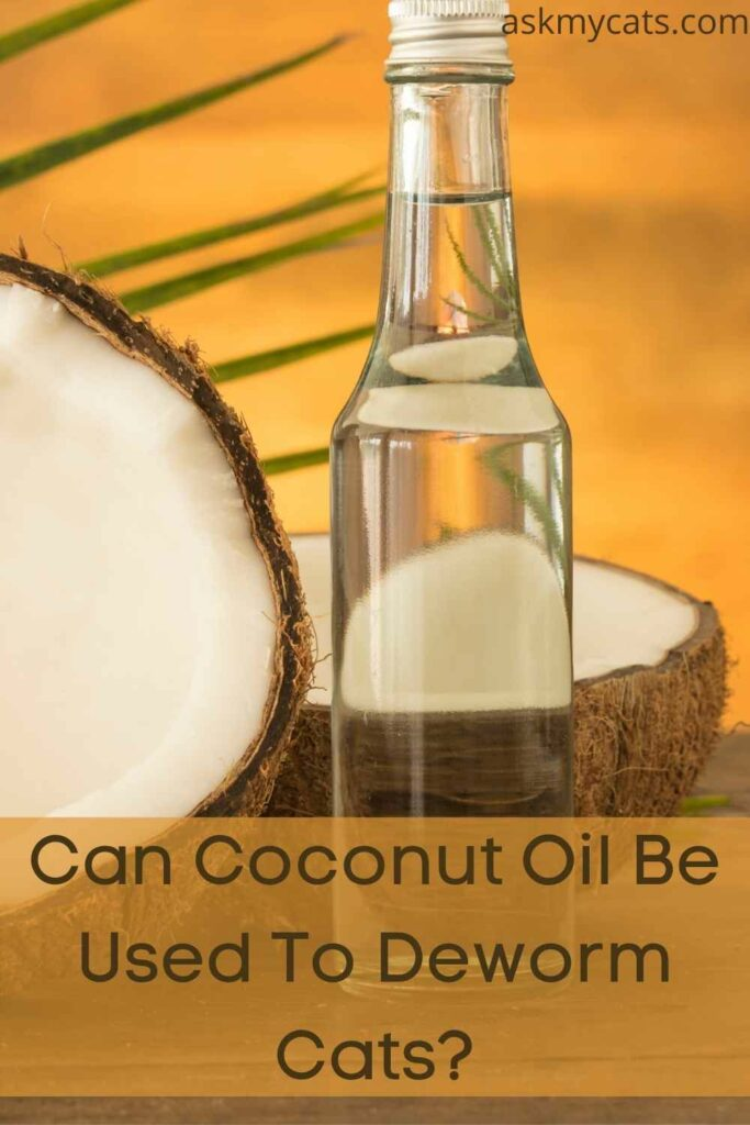 Can Coconut Oil Be Used To Deworm Cats?