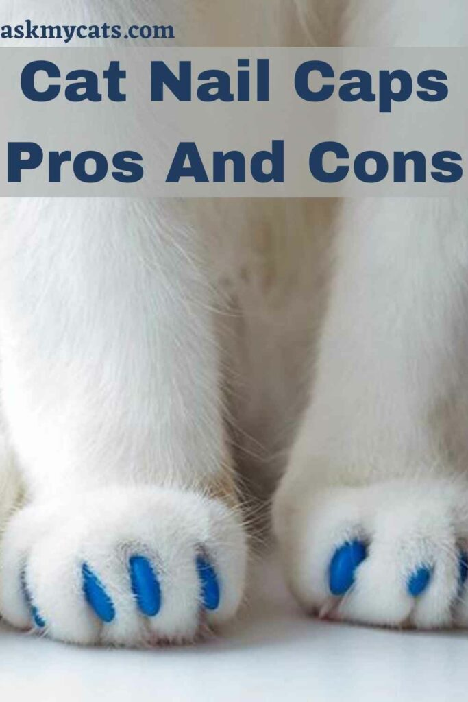 Cat Nail Caps Pros And Cons
